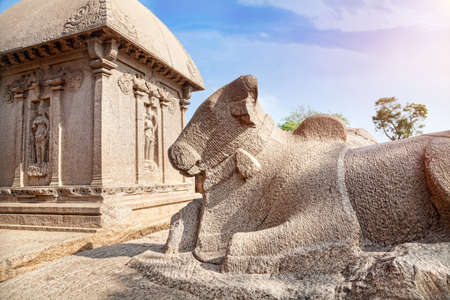 mamallapuram: Bull statue at Five rathas temple complex in Mamallapuram, Tamil Nadu, India