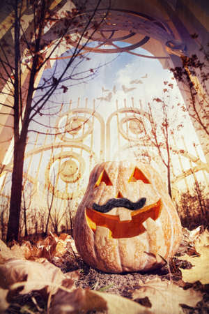 Halloween pumpkin near the gate in autumn photo