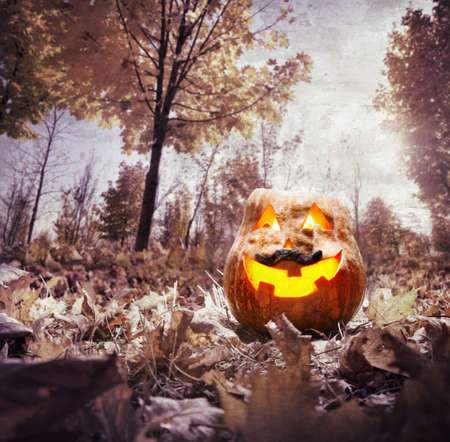 Halloween pumpkin glowing inside in dark autumn park Stock Photo - 23172434