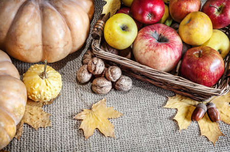 Pumpkins, apples in the basket, walnuts, acorns and autumn leaves on textured background photo