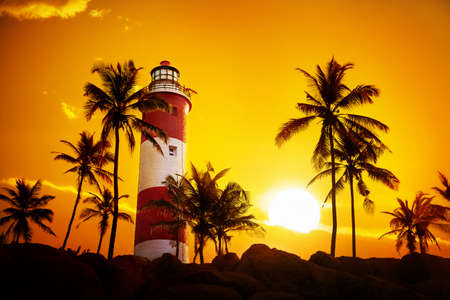 Lighthouse around palm trees at orange sunset sky in Kovalam, Kerala, India