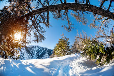 Winter mountain scenery at blue sky with sun photo