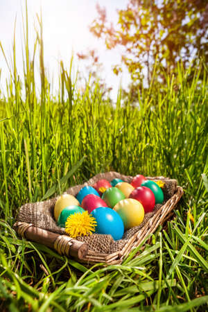 Easter colorful eggs in the basket on the green grass photo