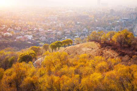 Hill with yellow trees in autumn at cityscape background photo