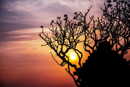 siluet: Ancient ruins and tree silhouette at sunset sky background in Hampi, Karnataka, India Stock Photo