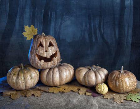 Halloween pumpkins at dark forest background photo