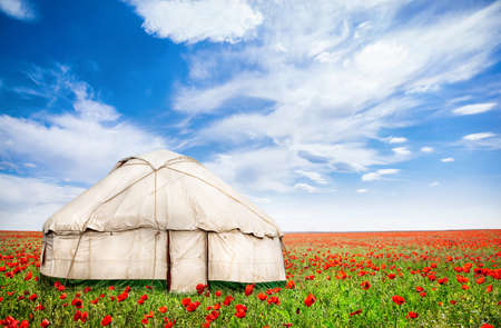 nomad: Urta nomadic house around poppy flowers on the field at spring time in central Asia