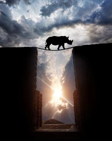 일몰 흐린 하늘에서 밧줄 다리로 심연에 Rhino 실루엣을 횡단