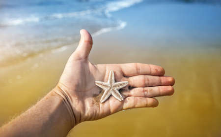 Starfish on the male hand near the ocean in India photo