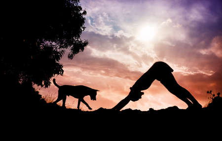 karnataka: Man silhouette doing yoga with dog nearby in Gokarna, Karnataka, India