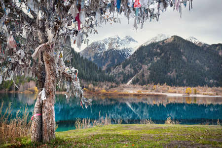 tyan shan mountains: Tree of wishes near Issyk mountain lake in Kazakhstan Stock Photo