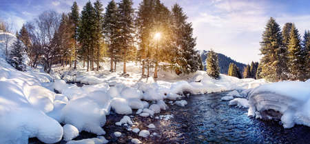 Winter river and forest in the mountains on sunny day photo
