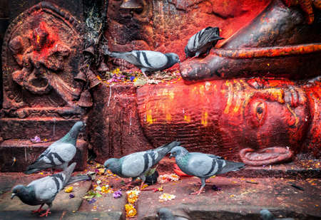 pooja: Doves near Bhairab statue in red color at Durbar Square in Kathmandu, Nepal Stock Photo