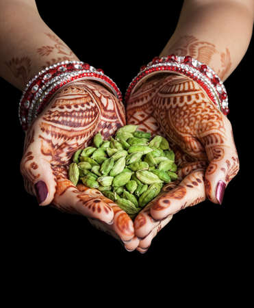 Woman hands with henna holding green cardamom spices isolated on black background with clipping path