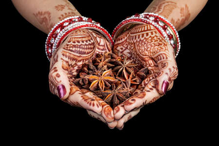 star path: Woman hands with henna holding star anise spices isolated on black background with clipping path Stock Photo