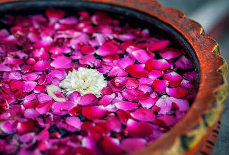 白いスパサロンのボウルに赤のバラの花びらを持つ花
