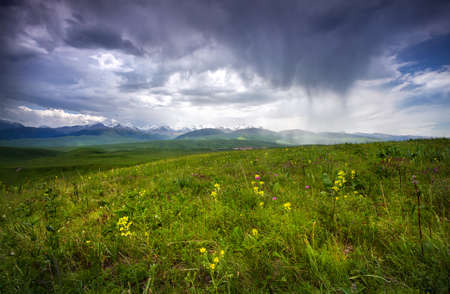 tyan shan: Grass Field and mountains at dramatic overcast sky in Ushkonyr near Chemolgan, Kazakhstan, central Asia Stock Photo