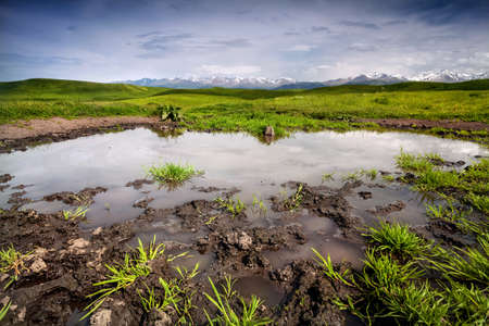 tyan shan mountains: Pond, Grass Field and mountains in Ushkonyr near Chemolgan, Kazakhstan, central Asia