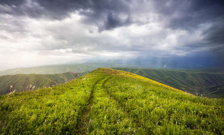 tyan shan mountains: Grass Field with auto track and mountains at dramatic overcast sky in Ushkonyr near Chemolgan, Kazakhstan, central Asia