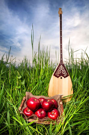 kazakh: Dombra Kazakh instrument and red apples on the grass at blue sky