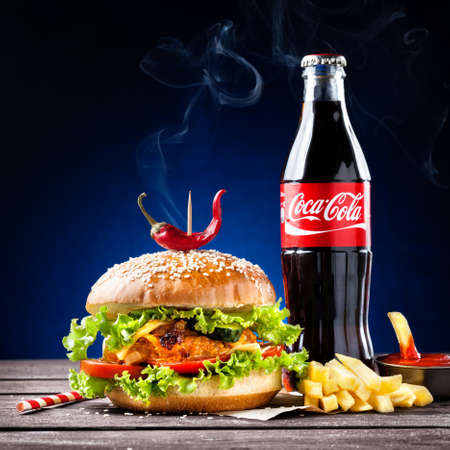 MUMBAI, INDIA %u2013 MAY 23, 2015: Veggie burger, French fries and Coca-Cola bottle - is the most popular carbonated soft drink beverages sold around the world Editorial