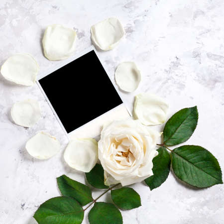 wedding photo frame: Blank photo frame near white rose and petals on white marble background