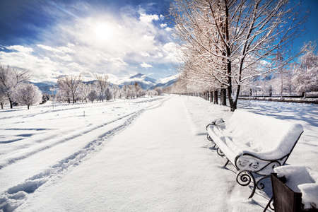 winter park: Winter mountain scenery of bench with snow, road and trees in the park