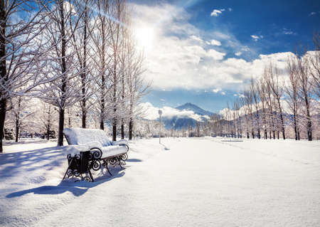 snow road: Winter mountain scenery of bench with snow, road and trees in the park