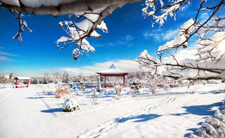 beautiful garden: Winter Japanese garden with red pagoda at mountains and blue sky in dendra park of first president in Almaty,  Kazakhstan