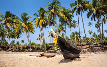 india fisherman: Fisherman boat and palm trees at Cola beach in Goa, India Stock Photo