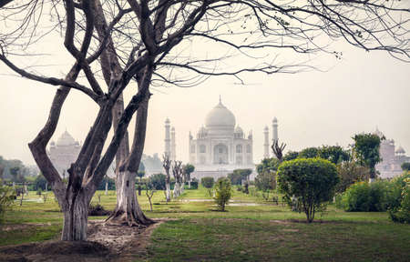 wonder: Taj Mahal one of the wonder of the world view from Mehtab Bagh garden with