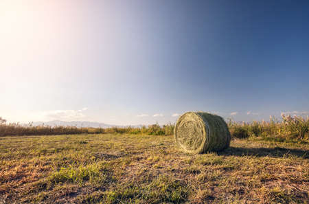 Hay roll on the meadow at sunset sky background