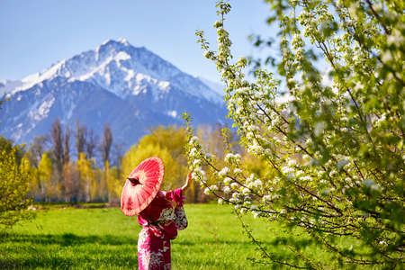 Woman in kimono with red umbrella in the garden with cherry blossom at mountain background Reklamní fotografie - 77327388