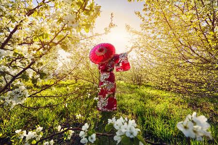 日の出白い花桜の花と庭で赤い傘と着物姿の女性シルエット
