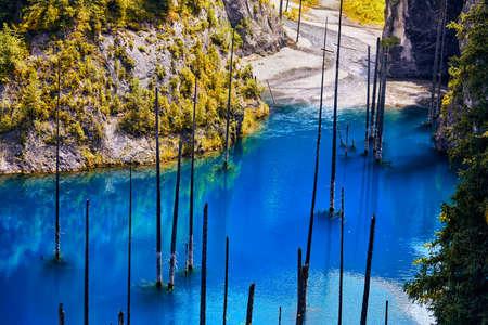 Hermosa vista del lago Kaindi de la alta montaña con los árboles secos flotados en Kazajistán, Asia central