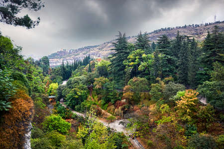Aerial view of Botanical Garden with autumn trees at overcast cloudy sky in Tbilisi, Georgia