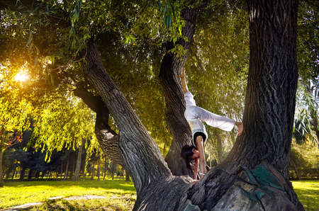 Beautiful Asian girl in white costume doing yoga on the big tree in the park