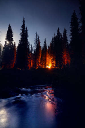 Camp fire burning in the forest near the river at night sky background