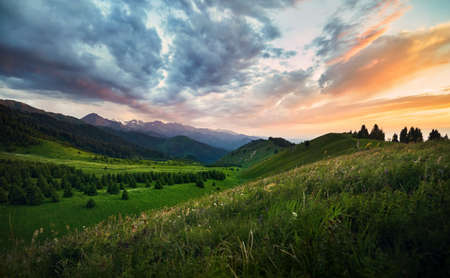 Beautiful landscape of green forest valley and mountains at epic orange sunset in Kazakhstan, Central Asia