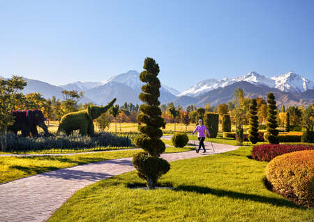 Young active woman doing Nordic walking exercise in the autumn topiary park Stock Photo