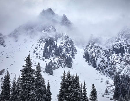 High mountains with snow and pine tree on peaks at winter time
