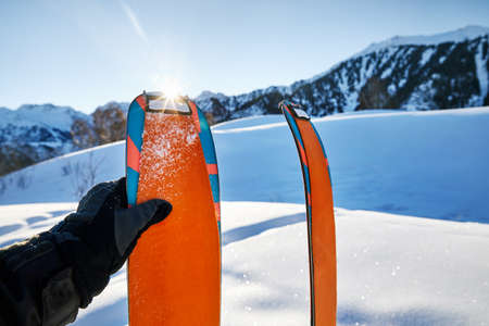 Pair of skis in snow with orange camus at sunny morning at the mountains