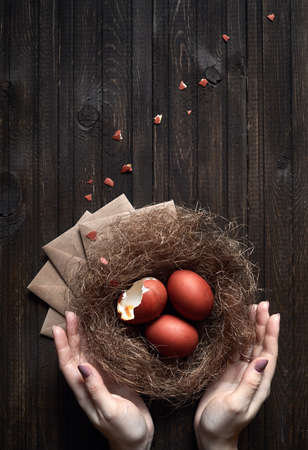 Woman holding brown eggs in the nest on Easter holidays. One egg is broken.
