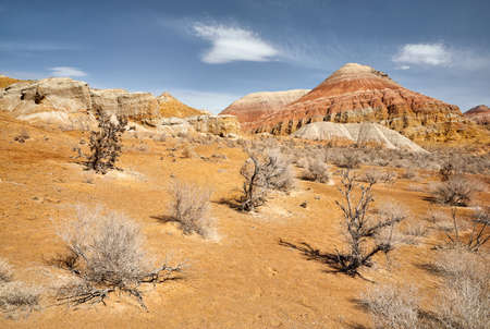 Landscape of Bizarre layered mountain and saxaul trees in beautiful desert park