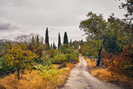 Road to the church in Georgian cemetery at autumn time in Signagi, Georgia