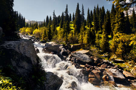 Wild River in the mountain valley at sunny day in Kazakhstan Stock fotó