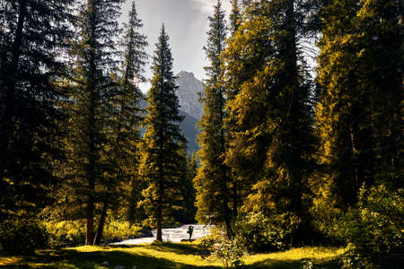 Tourist with big backpack near the river at green mountain valley with giant fir trees in Karakol national park, Kyrgyzstan