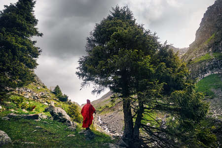 Tourist in the red rain cover near the tree in the mountain valley