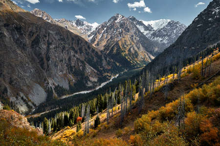 Beautiful landscape of mountain valley with river and autumn yellow forest in Kazakhstan, Almaty 写真素材