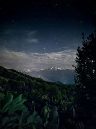 Beautiful scenery of white peak mountains and lush greenery at foreground against night sky full of stars. Astrophotography and long exposure.